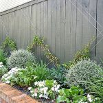 Awesome Fence With Evergreen Plants Landscaping Ideas 27