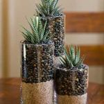 Beauty Succulents for Houseplant Indoor Decorations 3 1
