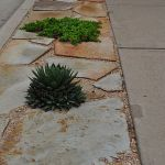 Texas Style Front Yard Landscaping Ideas 13