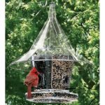 Creative DIY Bird Feeder Ideas 35
