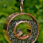 Creative DIY Bird Feeder Ideas 51