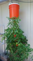 Simple DIY Vertical Garden Ideas 32