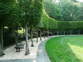 Fascinating Evergreen Pleached Trees for Outdoor Landscaping 29