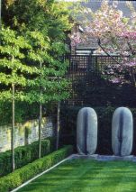 Fascinating Evergreen Pleached Trees for Outdoor Landscaping 47