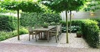 Fascinating Evergreen Pleached Trees for Outdoor Landscaping 52
