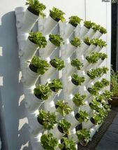 Inspiring Vertical Garden Ideas for Small Space 23