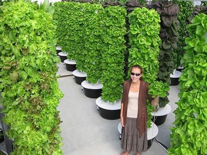 Inspiring Vertical Garden Ideas for Small Space 7
