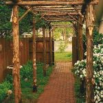 20 Awesome Tips and Ideas to Grow Grape in Your Home Backyard 10