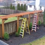 20 Awesome Tips and Ideas to Grow Grape in Your Home Backyard 2