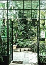Amazing Indoor Jungle Decorations Tips and Ideas 26