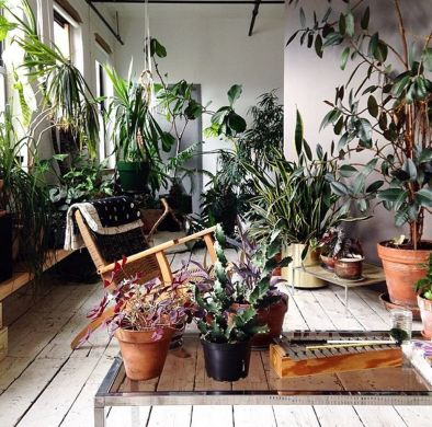 Amazing Indoor Jungle Decorations Tips and Ideas 28