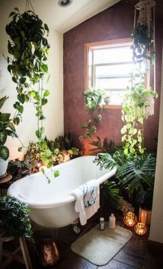 Amazing Indoor Jungle Decorations Tips and Ideas 29
