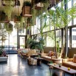 Amazing Indoor Jungle Decorations Tips and Ideas 35