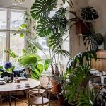 Amazing Indoor Jungle Decorations Tips and Ideas 4