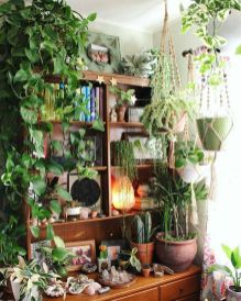 Amazing Indoor Jungle Decorations Tips and Ideas 47