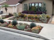 Colorful Landscaping with Low Maintenace Flower Bushes 25