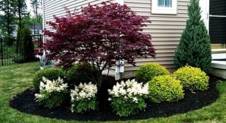 Colorful Landscaping with Low Maintenace Flower Bushes 27