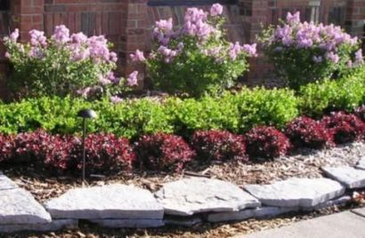 Colorful Landscaping with Low Maintenace Flower Bushes 51