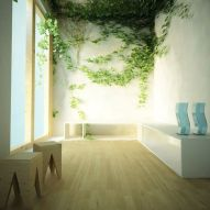 Marvelous Indoor Vines and Climbing Plants Decorations 61