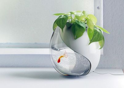 Mini Aquaponics with Fish for Home Decorations 15