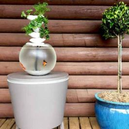 Mini Aquaponics with Fish for Home Decorations 8