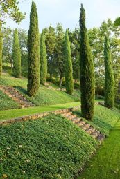 That is How to Make Garden Steps on a Slope 14