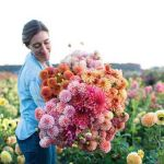 Beauty Flower Farm Which Will Make You Want to Have It 16