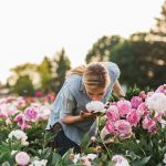 Beauty Flower Farm Which Will Make You Want to Have It 22