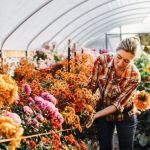 Beauty Flower Farm Which Will Make You Want to Have It 9