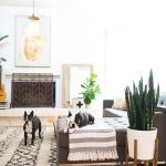 Modern Bohemian Home Decorations and Setup 4