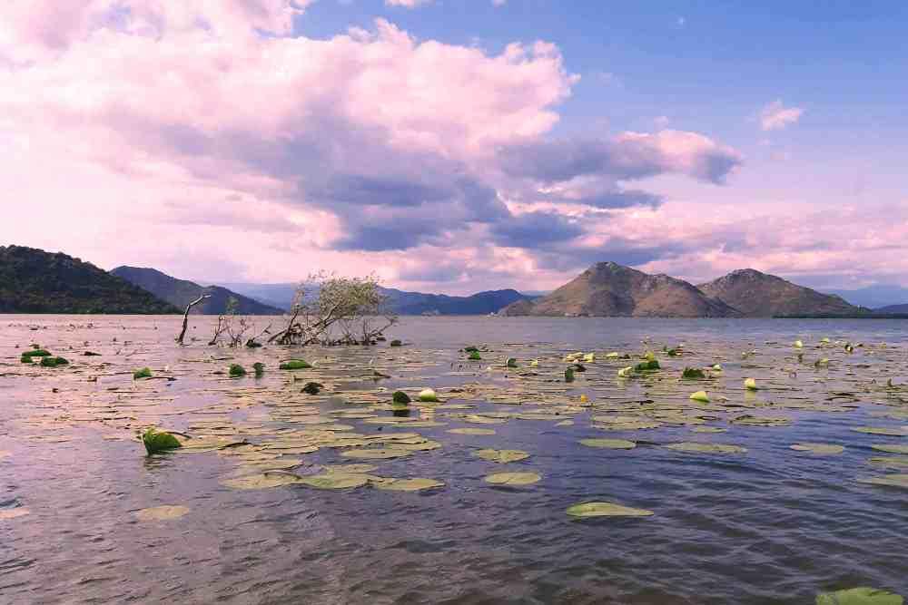 must do in Skadar Lake