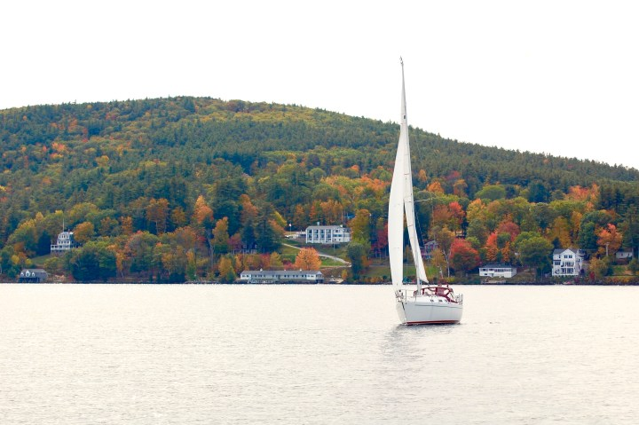 sailboat on the lake with foliage in the background