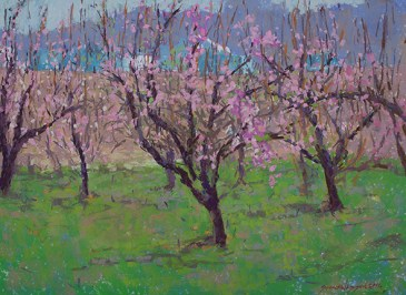 Flowering Fruit trees 18x24 pastel sized