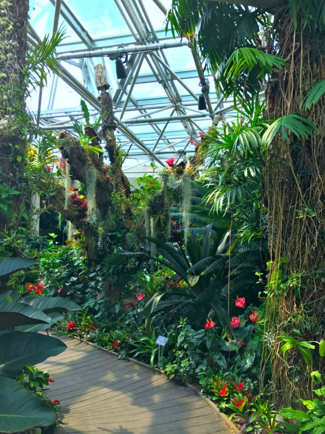 San Antonio Botanical Garden Hoots Of A Night Al