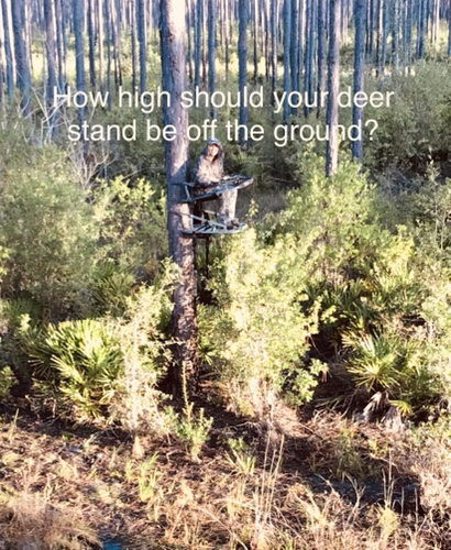 Tree stand height chart