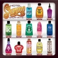 GruffRhys_HotelShampoo Top Albums 2011