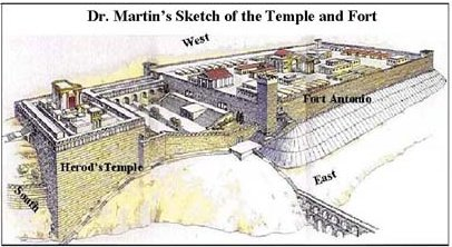 Image result for picture of fort antonio and jerusalem temple