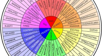 Feelings Wheel - Color
