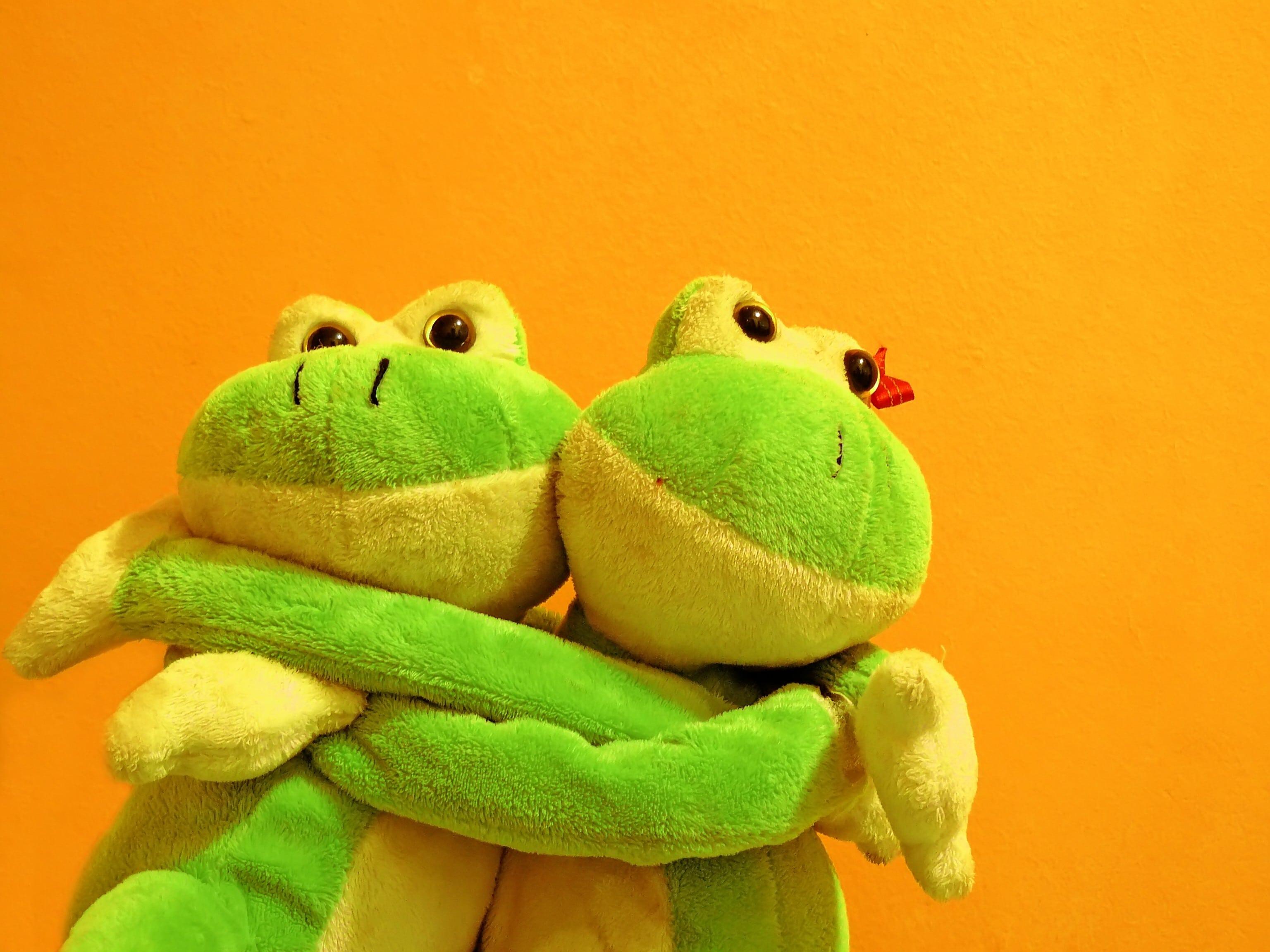No frog dating