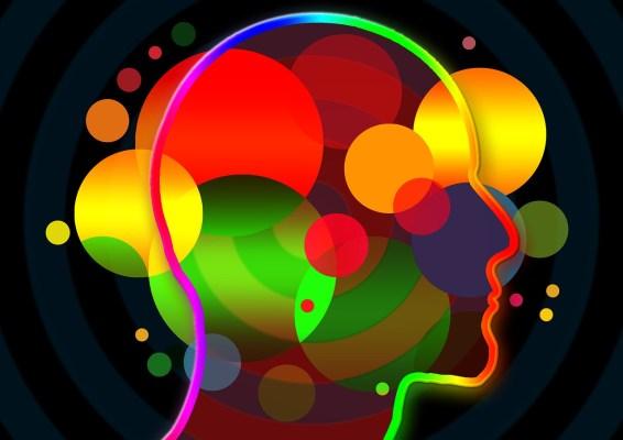 Incredible Amazing Brain Empathy