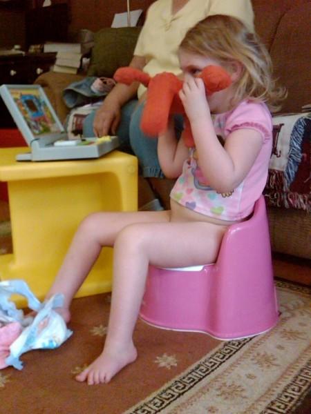 Bathroom Design Training Top 10 Tips For Potty Training