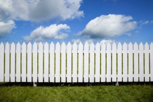 The Problem with Fences
