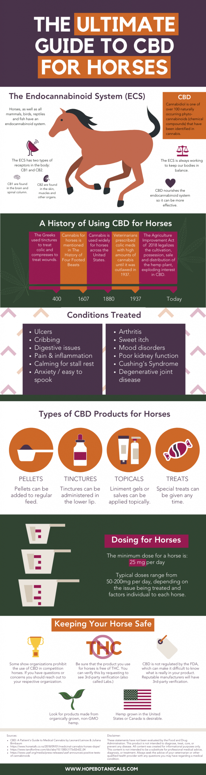 The Ultimate Guide to Using CBD for Horses