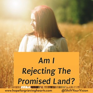 Embracing a new life is scary. Desires to return to things of the past can cause us to reject the abundance of our modern day Promised Land.