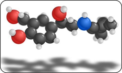 salbutamol r enantiomer asthma drug