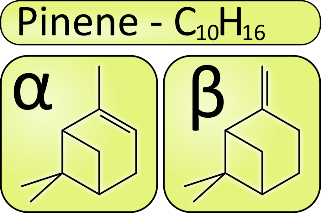 pinene isomers structure