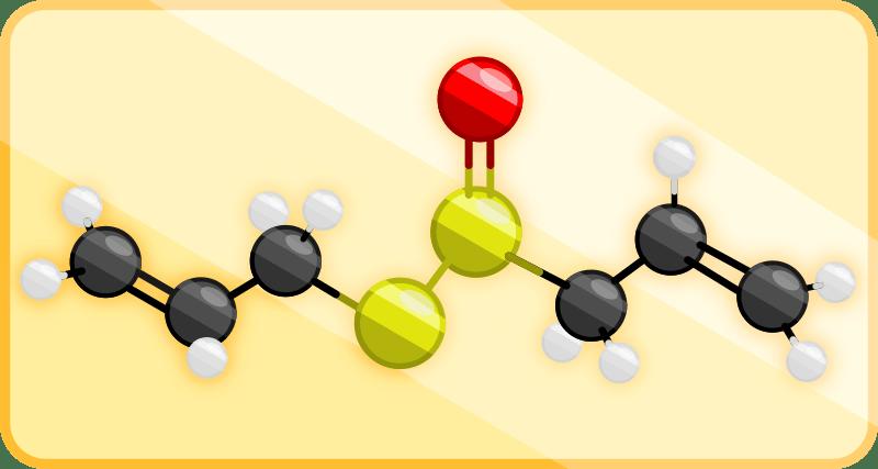 allicine structure showing bonding