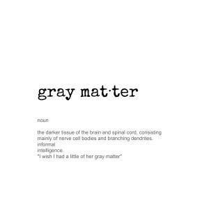 the gray matter(s)