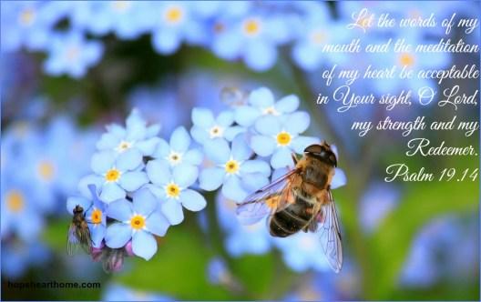 Psalm19_14 forgetmenots