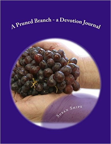 A Pruned Branch: Devotion Journal for Today's Busy Woman